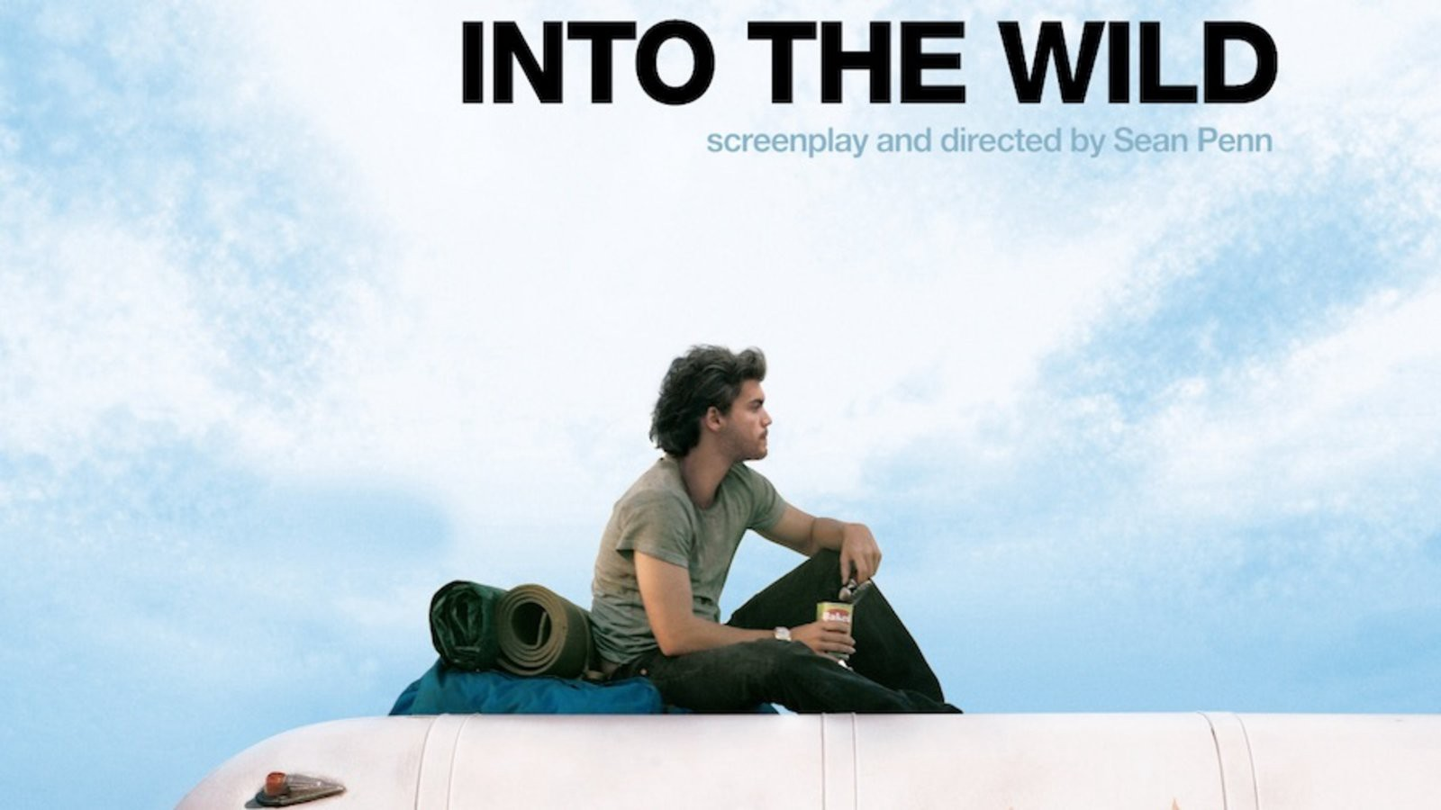 películas into the wild